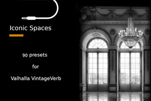 Iconic Spaces for VintageVerb